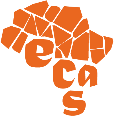 ECAS7: 7th European conference on African Studies